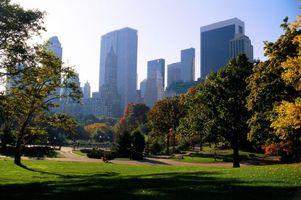 Бесплатные фото город,небоскребы,парк,деревья,осень,день