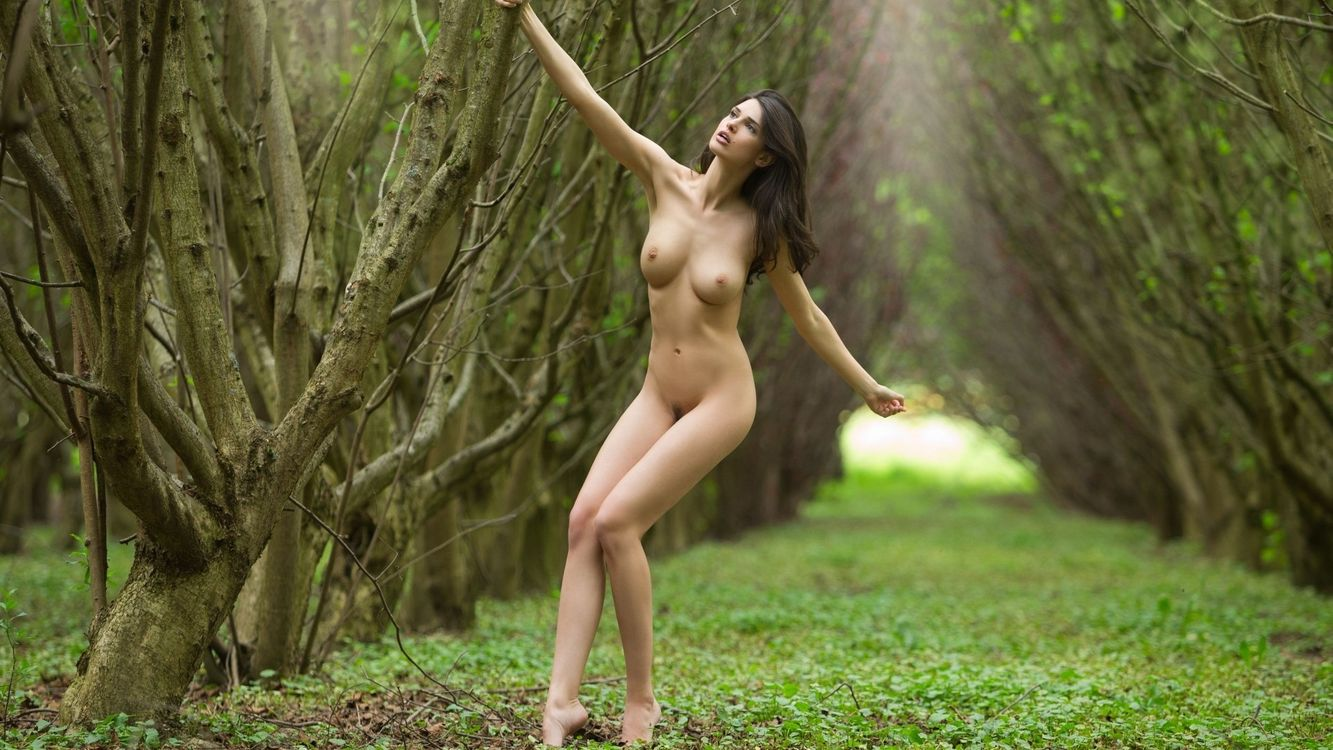 Фото бесплатно девушка, обнаженная, груди, соски, ноги, дерево, руки, эротика, эротика