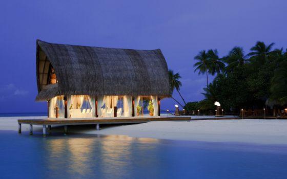 Photo free beach, rest, palms
