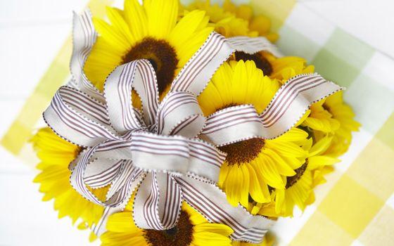 Фото бесплатно подарок, ромашки, лепестки, ленточка, бант, упаковка, цветки, стол, желтый, цветы
