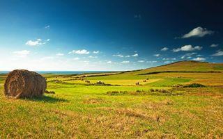 Бесплатные фото поле,небо,голубое,облака,трава,урожай,катушки