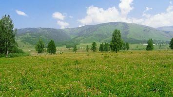 Фото бесплатно луг, пейзажи, холмы