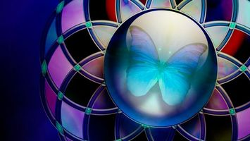 Обои шар, круг, бабочка, крылья, линии, узор, квадраты, ромб, заствака, насекомые