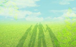 Фото бесплатно трава, луг, листья