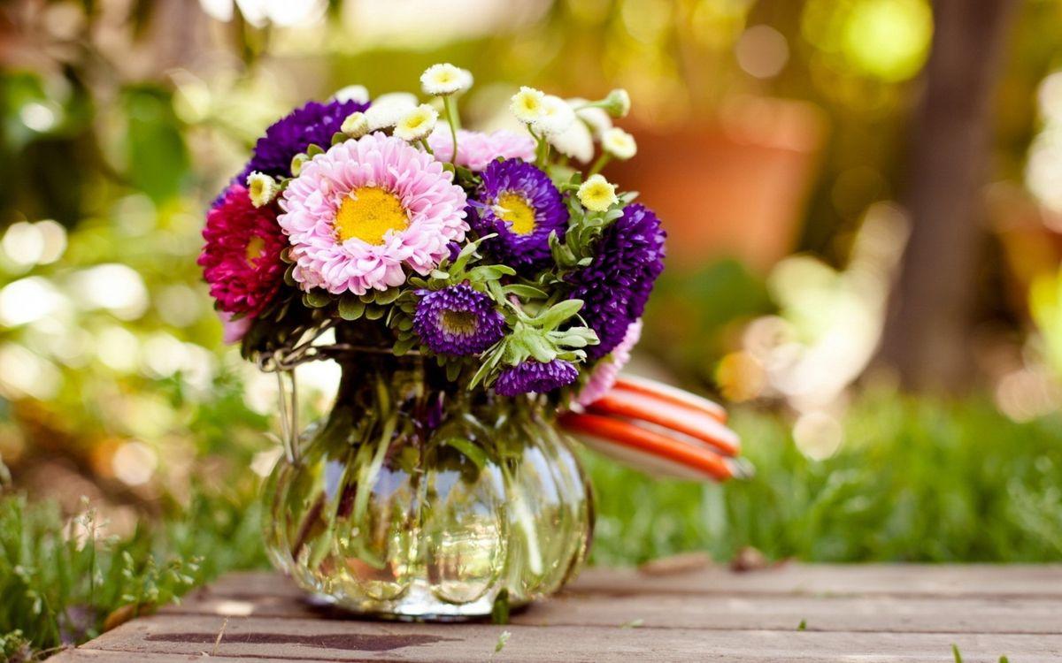 Фото бесплатно ваза, букет, ромашки, астры, стол, лепестки, сердцевинки, листья, стебли, цветы, цветы