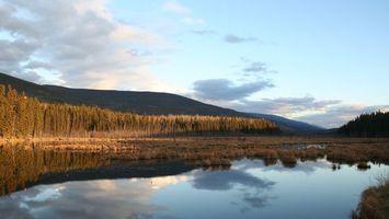 Фото бесплатно вода, небо, лес