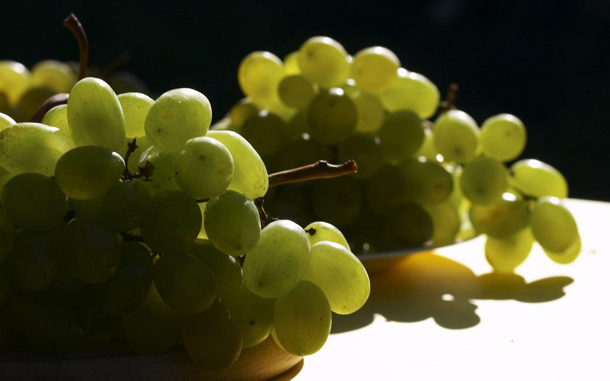 Фото бесплатно ягода, виноград, зеленый, грозди, свет, тень, еда, еда
