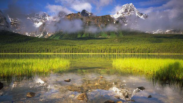 Фото бесплатно поляну, трава, пейзаж
