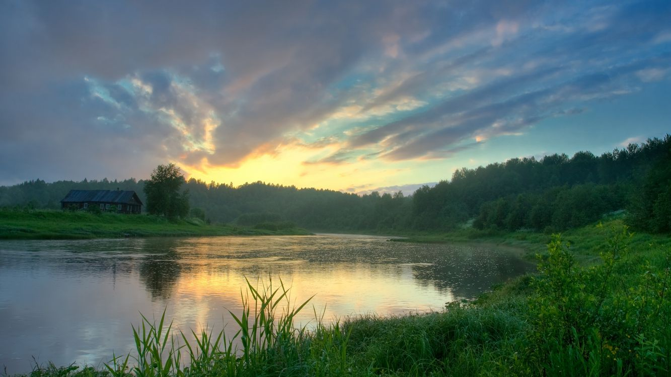 Фото бесплатно закат, река, деревья, листва, тростник, вода, небо, облака, пейзажи, пейзажи