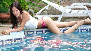 Photo free pool, petals, chaise longue