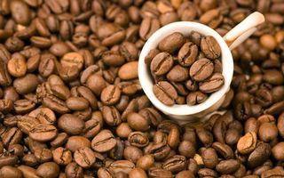 Бесплатные фото чашка,полная,белая,зерна,кофе,россыпью,напитки