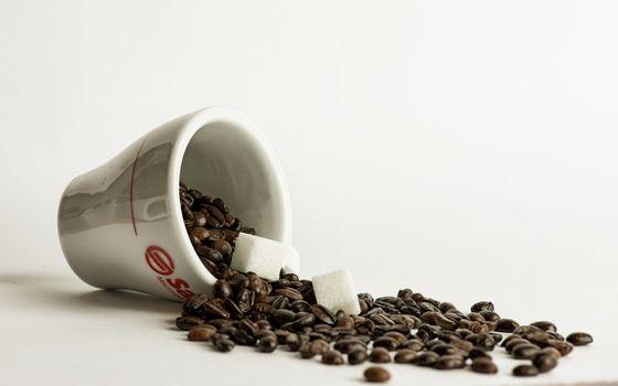 Бесплатные фото кофе,зерна,кружка,белая,сахар,кубики,напитки