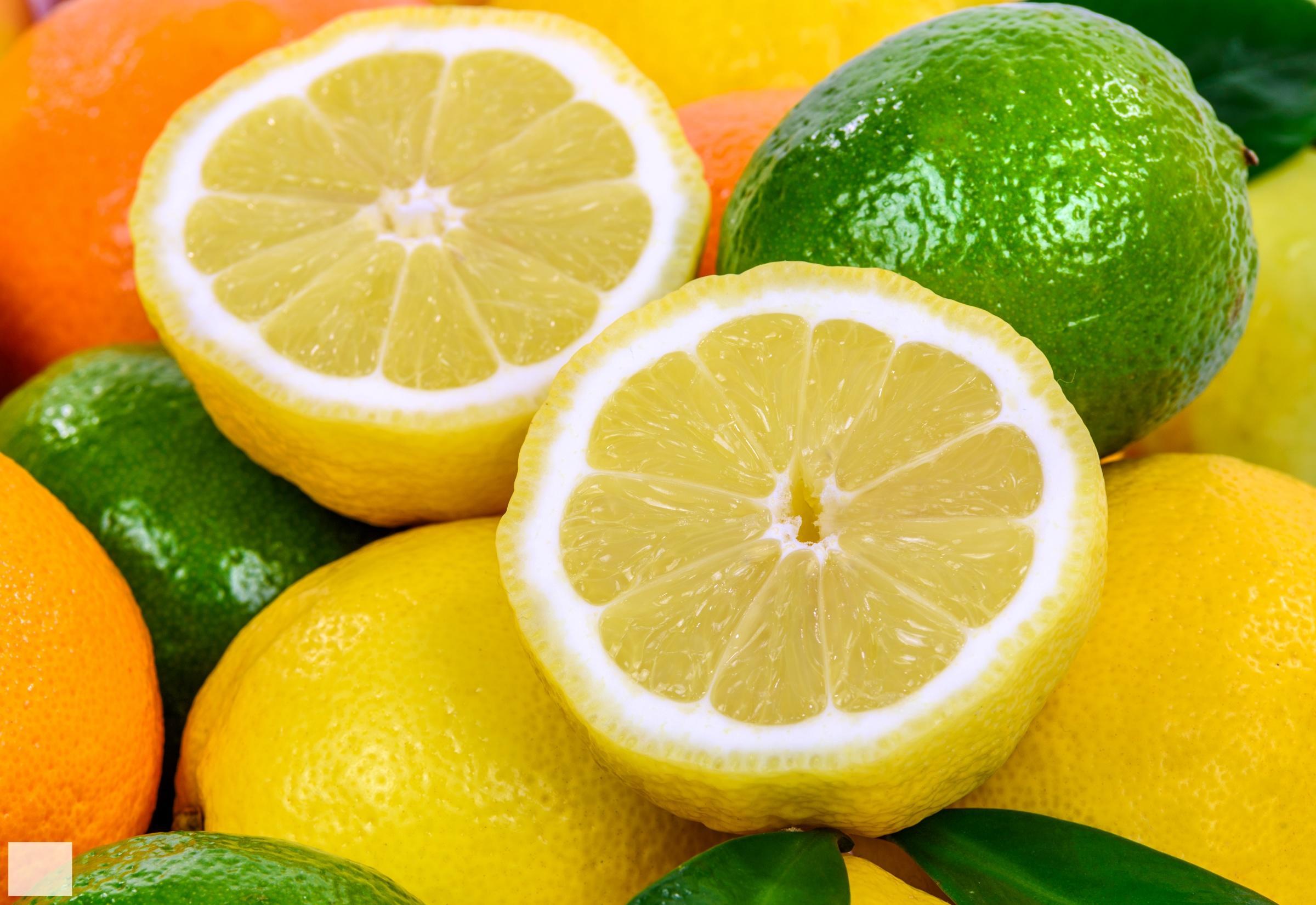 Земерзший лимон, лайм и апельсин скачать
