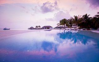 Бесплатные фото океан,пляж,пальмы,берег,песок,вода,беседка