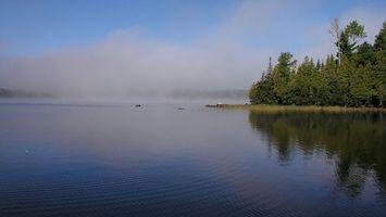 Бесплатные фото озеро,вода,деревья,лес,туман,небо,голубое