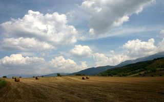 Photo free field, hay, straw