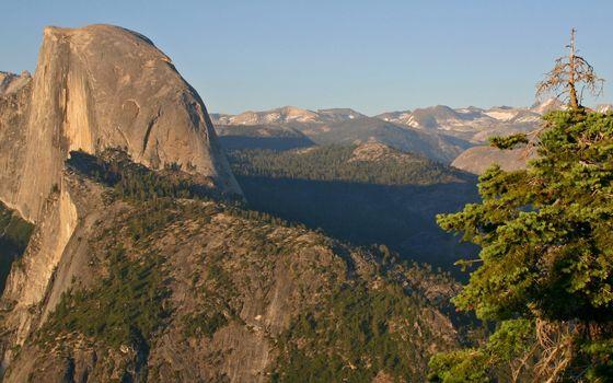 Фото бесплатно скалы, деревья, камень
