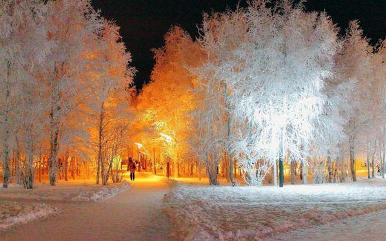 Фото бесплатно зима, парк, вечер