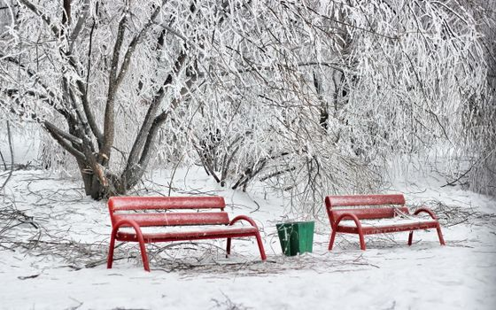 Photo free two benches, park, bucket