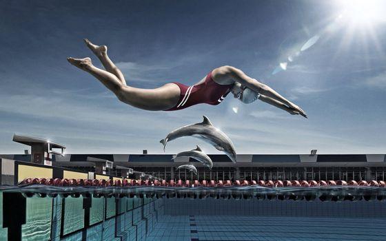 Бесплатные фото бассейн,соревнование,девушка,дельфины,пловцы,солнце,юмор