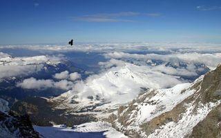 Обои ястреб, парит, горы, облака, высота, снег, птицы, пейзажи