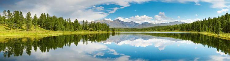 Бесплатные фото лето,озеро,берег,деревья,елки,трава,зелень
