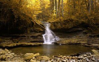 Бесплатные фото осенний водопад,осень,жёлтая листва,камни,бревно,природа