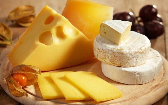 Фото бесплатно сыр, разные, сорта