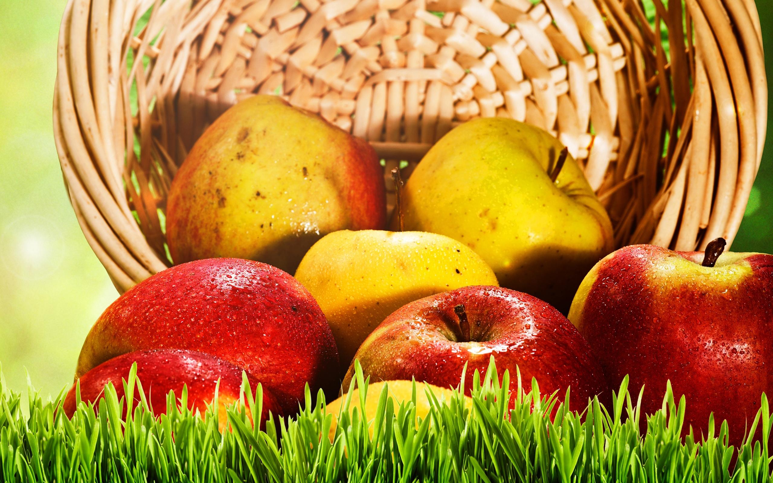 яблоки, корзина, плоды