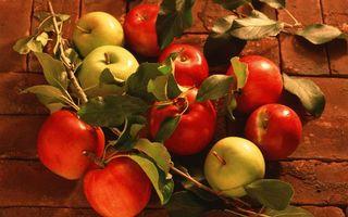 Фото бесплатно яблоки, желтые, красные
