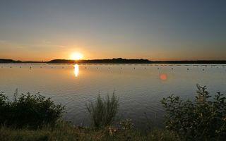 Бесплатные фото берег,растительность,озеро,буйки,небо,солнце,закат