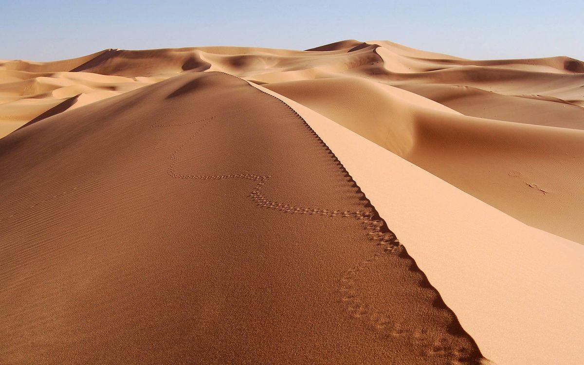 Фото бесплатно дюны, песок, следы, пейзажи - скачать на рабочий стол