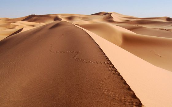 Фото бесплатно дюны, песок, следы