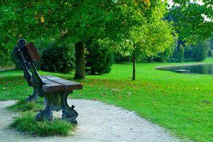 Фото бесплатно скамейка, парк, пруд