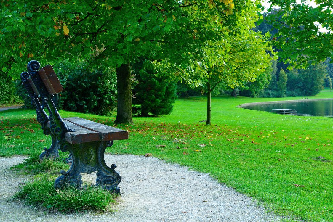 Фото бесплатно скамейка, парк, пруд - на рабочий стол