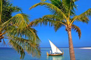 Бесплатные фото тропики,мальдивы,море,лодка,пальмы,пейзажи