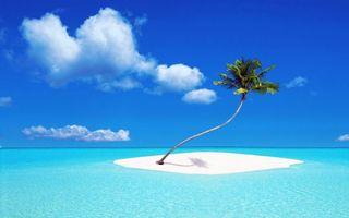 Бесплатные фото пальма,море,остров,небо,облака,пейзажи