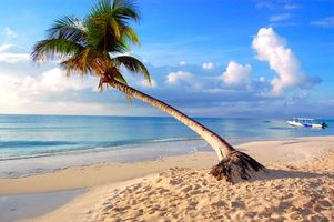 Скачать картинку море, тропики для рабочего стола бесплатно