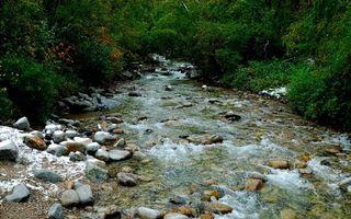 Фото бесплатно вода, река, гора