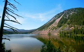 Бесплатные фото вода,река,озеро,горы,скалы,лес,деревья