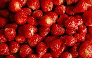 Фото бесплатно ягода, клубника, много
