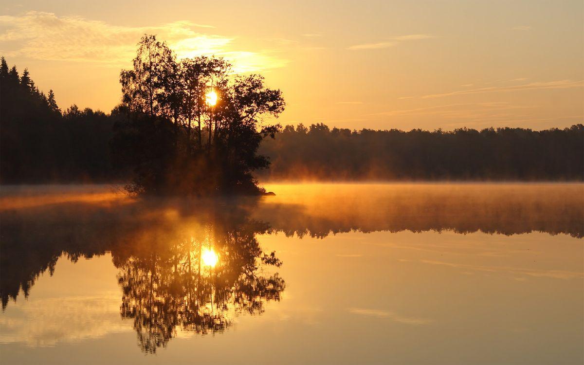 Фото бесплатно закат, солнце, озеро, островок, деревья, ветки, лучи, туман, поздний, вечер, пейзажи, пейзажи