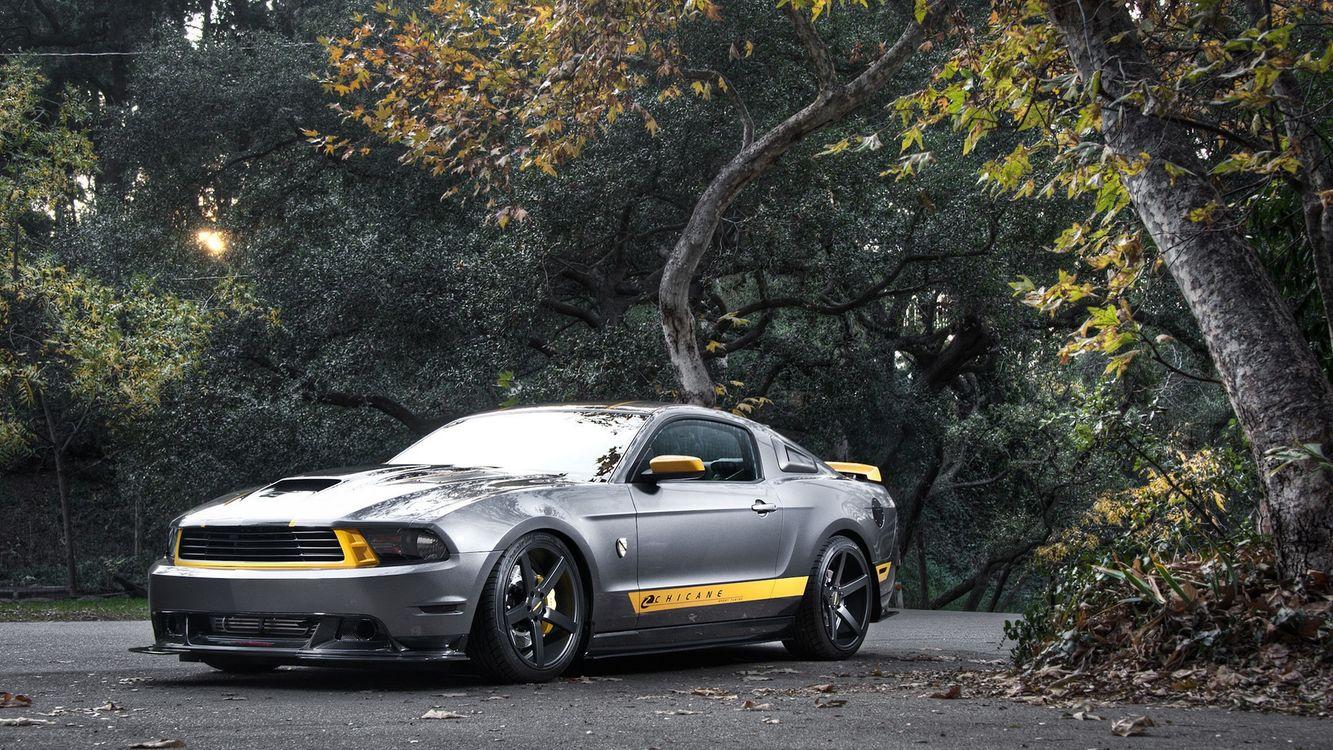 Фото бесплатно форд, мустанг, воздухозаборник, спойлер, диски, дорога, деревья, машины, машины