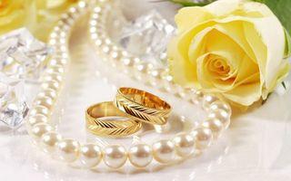 Бесплатные фото кольца,обручальные,ожерелье,жемчуг,бусы,роза,лепестки