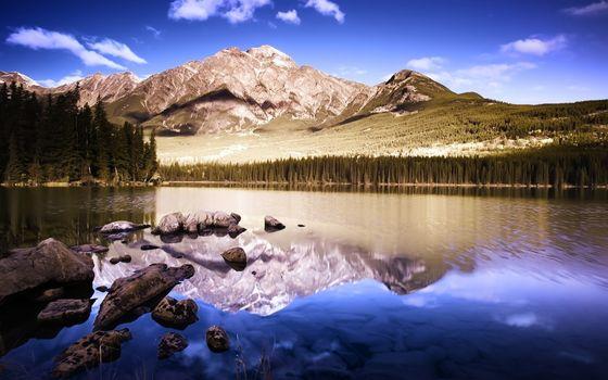 Фото бесплатно лесное озеро, камни, лес