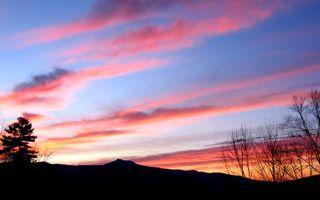 Фото бесплатно небо, красное, деревья