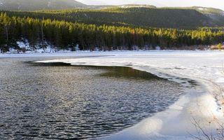 Бесплатные фото вода,река,озеро,лед,деревья,снег,лес