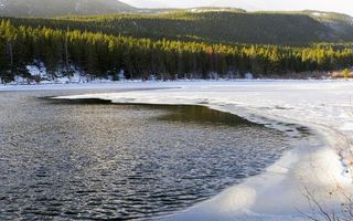 Фото бесплатно деревья, река, лед