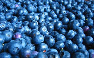Бесплатные фото ягода,черника,хвостики,спелая,много,еда