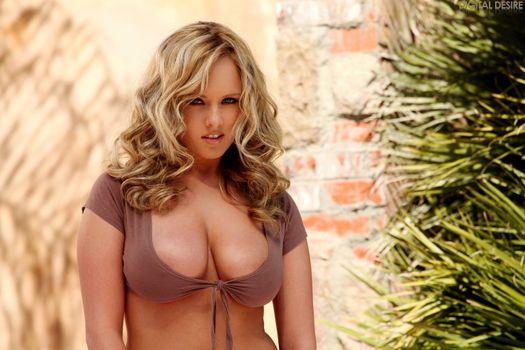 Фото бесплатно дівчина, красива, блондинка